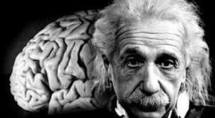 otak dan einstein
